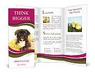 0000055638 Brochure Templates