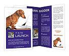 0000055691 Brochure Templates