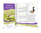 0000055972 Brochure Templates