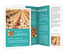 0000056001 Brochure Templates