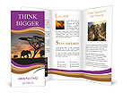 0000056463 Brochure Templates