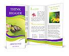 0000057350 Brochure Templates