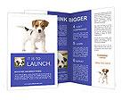 0000057355 Brochure Templates