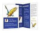 0000057602 Brochure Templates