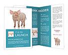 0000057647 Brochure Templates