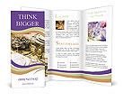 0000058733 Brochure Templates