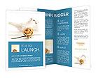 0000059013 Brochure Templates