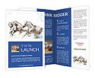 0000059090 Brochure Templates