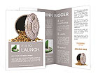 Bank Lock Brochure Templates