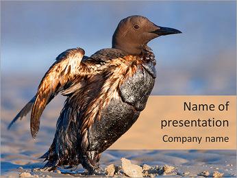 Grey Bird PowerPoint Template