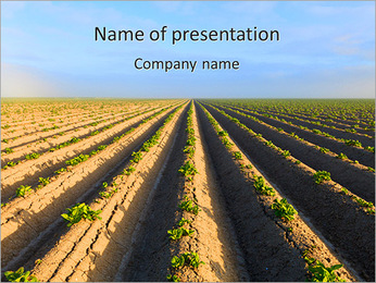 Harvest Season PowerPoint Template