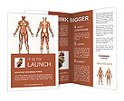Muscle System Brochure Templates