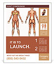 Muscle System Poster Templates