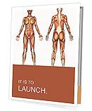 Muscle System Presentation Folder