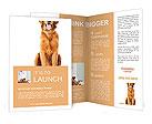 Labrador Brochure Templates