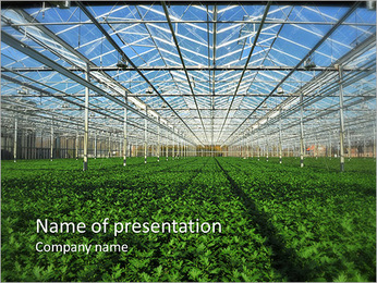 Organic Orchard PowerPoint Template