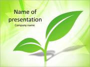 Single Green Plant Plantillas de Presentaciones PowerPoint