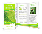 Dew Brochure Templates