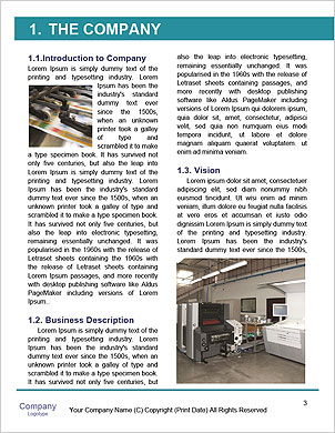 0000060242 Word Template - Page 3