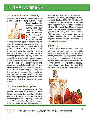 0000060248 Word Template - Page 3