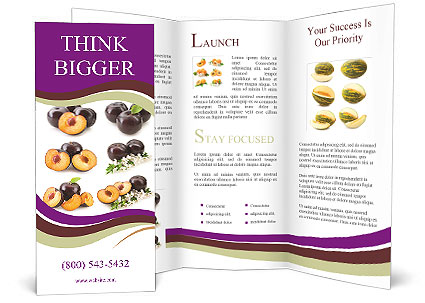 0000060249 Brochure Template