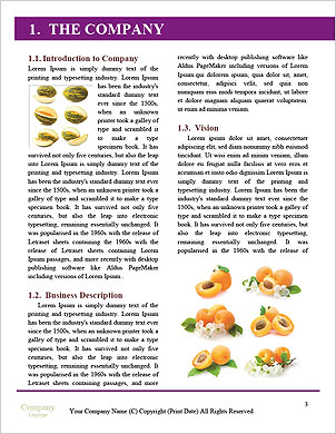 0000060249 Word Template - Page 3
