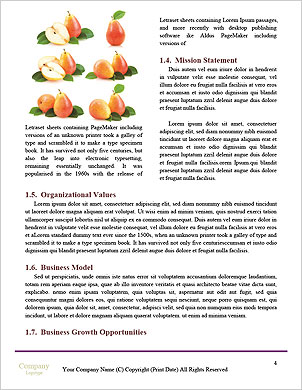 0000060249 Word Template - Page 4