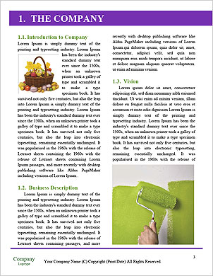 0000060258 Word Template - Page 3