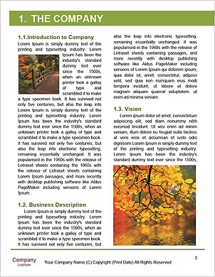 0000060263 Word Template - Page 3