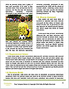 0000060281 Word Templates - Page 4