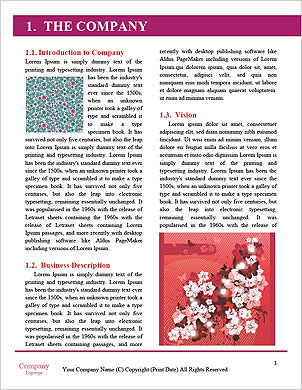 0000060295 Word Template - Page 3