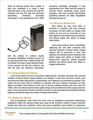 0000060303 Word Template - Page 4
