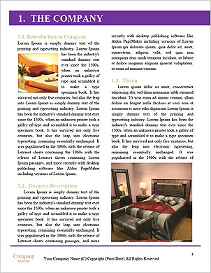 0000060307 Word Template - Page 3