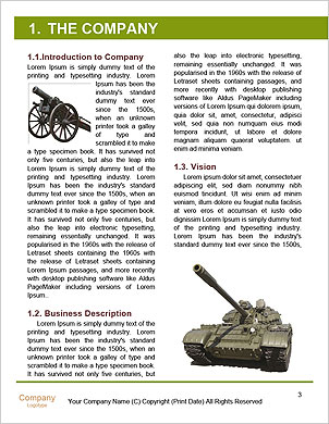 0000060313 Word Template - Page 3