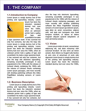0000060321 Word Template - Page 3