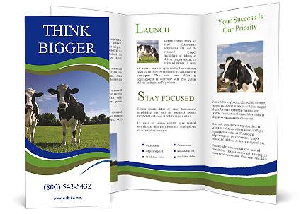 0000060334 Brochure Template