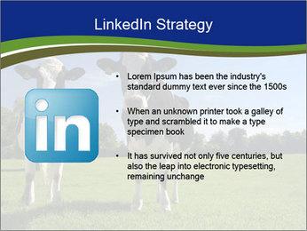 0000060334 PowerPoint Template - Slide 12