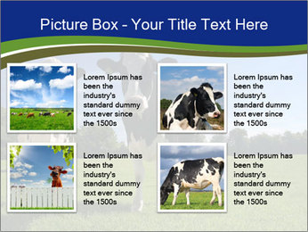 0000060334 PowerPoint Template - Slide 14