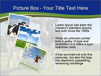 0000060334 PowerPoint Template - Slide 17