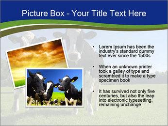 0000060334 PowerPoint Template - Slide 20