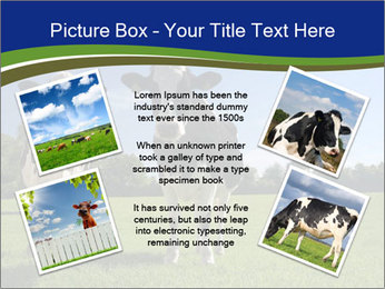0000060334 PowerPoint Templates - Slide 24