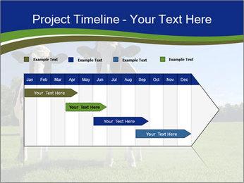 0000060334 PowerPoint Template - Slide 25