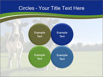 0000060334 PowerPoint Templates - Slide 38
