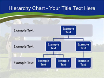 0000060334 PowerPoint Template - Slide 67