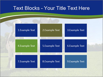 0000060334 PowerPoint Template - Slide 68