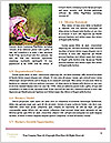 0000060342 Word Templates - Page 4