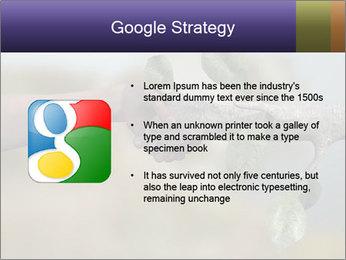 0000060343 PowerPoint Templates - Slide 10