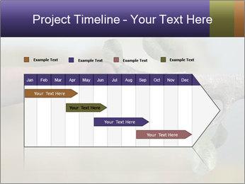 0000060343 PowerPoint Templates - Slide 25
