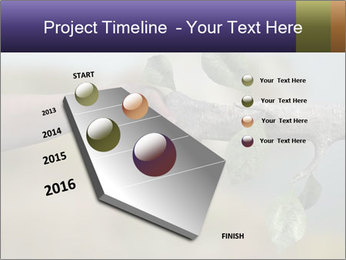 0000060343 PowerPoint Template - Slide 26