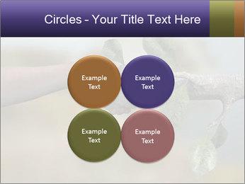 0000060343 PowerPoint Templates - Slide 38